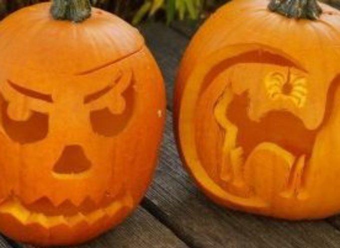 Intagliare zucche di Halloween, origine e leggenda della notte delle streghe