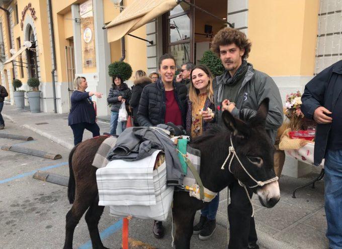 DALLA SICILIA AL PIEMONTE CON L'ASINO  NICOLA WINKLER E FEFE' ACCOLTI AD ALTOPASCIO  PER UN TAPPA SULLA FRANCIGENA