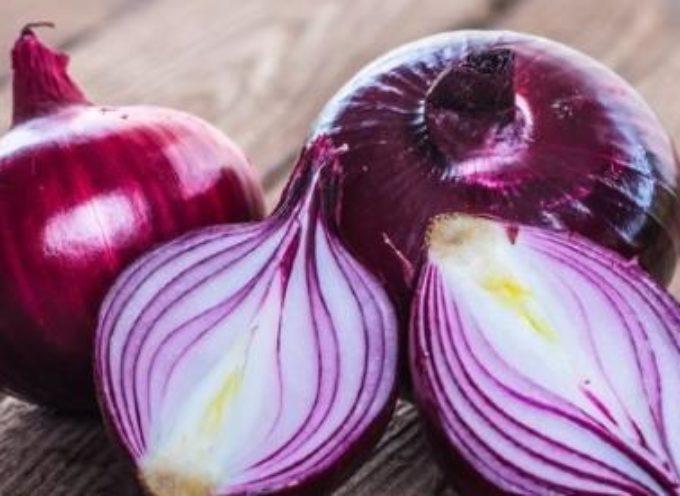 Coltivare cipolle biologiche. Trucchi, consigli e segreti