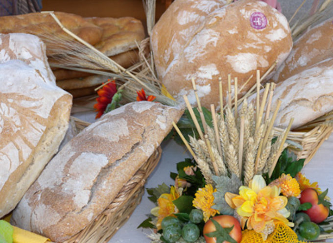 FESTA DEL RINGRAZIAMENTO domenica 12 novembre a Fornoli