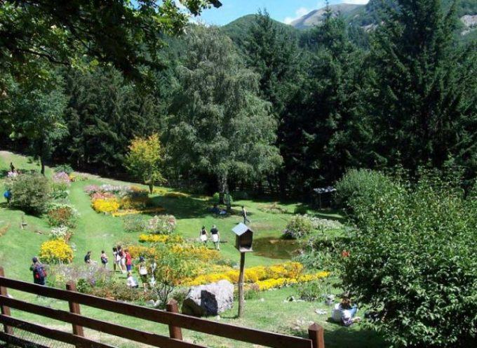 Parchi della Garfagnana: tutta la bellezza della montagna toscana