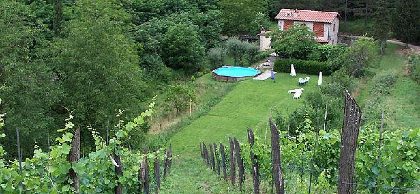 IL MONTE BARGIGLIO ed il vino biodinamico di Macea  A  Borgo a Mozzano