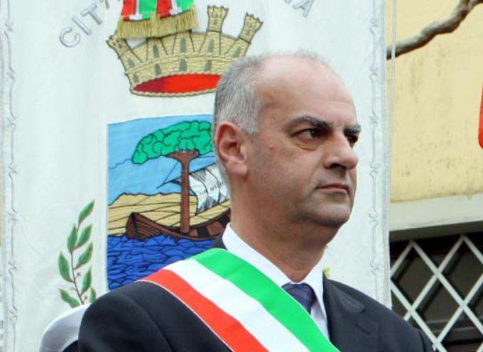 """Pirogassificatore, Bonini rassicura: """"Verifiche approfondite sul progetto"""""""