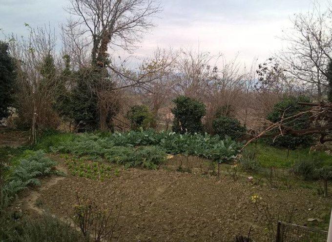L'orto in inverno…