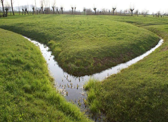 I fossi… La prima funzione che assolvono è raccogliere l'acqua in eccesso dai campi