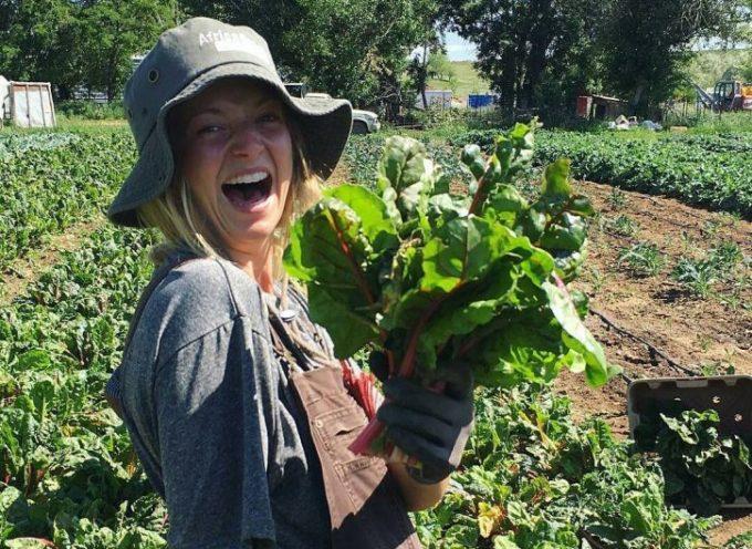 Così l'agricoltura biologica può sfamare il mondo