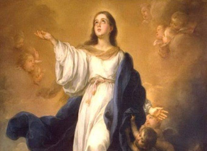 Il Santo del giorno, 8 Dicembre: Immacolata Concezione