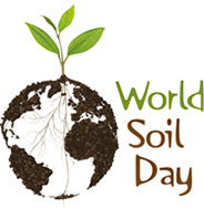 world-soil-day-27698