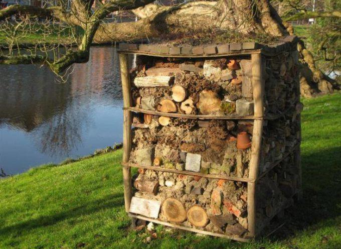 La casina degli insetti…