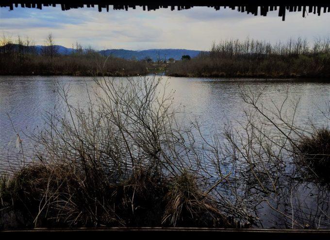 Lago del Sibolla, via libera alla mozione Marchetti (FI)
