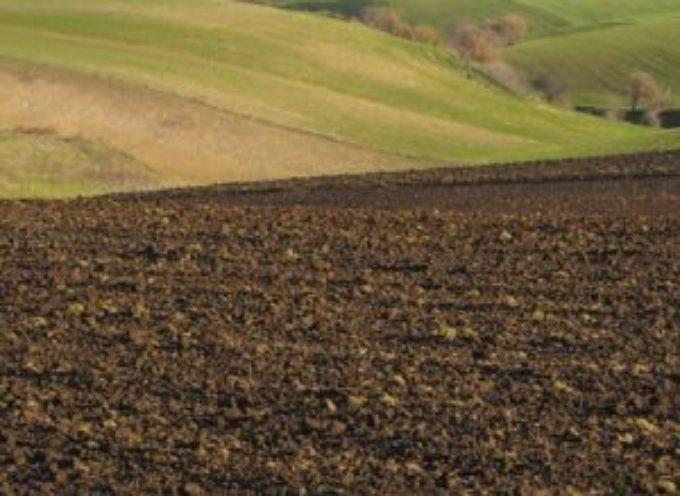Rivalutazione terreni. Scatta la plusvalenza