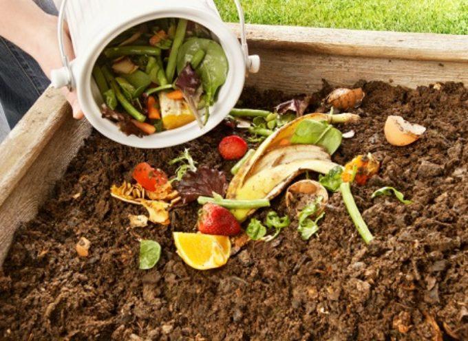 Come fare il compostaggio domestico, da usare come terriccio nell'orto, o nei vasi