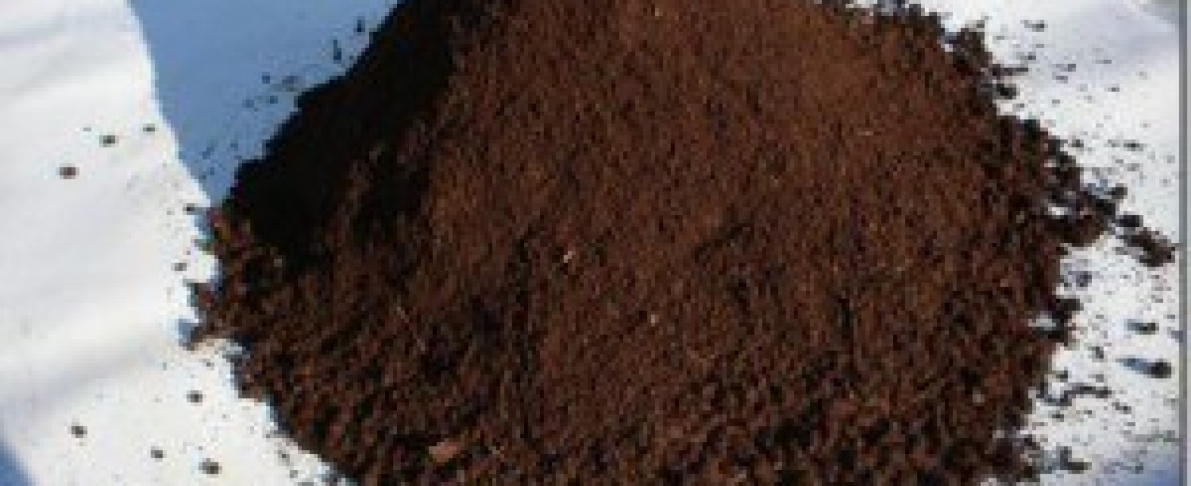 Humus di lombrico il miglior concime per l'orto