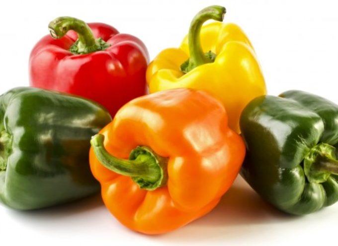 Coltivare i peperoni