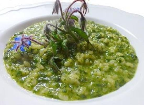 RISOTTO CON LA BORRAGGINE