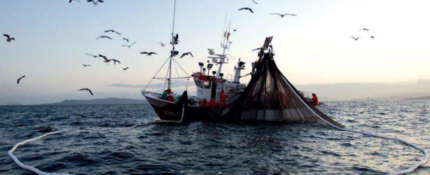 Pesca, è allarme in Toscana: con la fine degli sgravi contributivi a rischio 3mila posti di lavoro