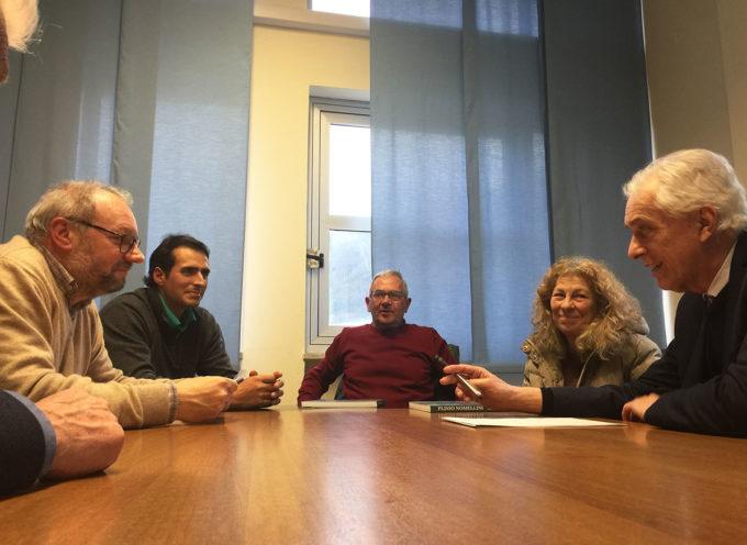 Olivo Quercetano: tavolo di confronto Comune-produttori per la tutela e la valorizzazione della varietà autoctona