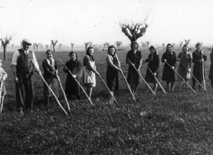 Un tempo a marzo si iniziava a zappare il grano per tenerlo libero dalle erbacce: