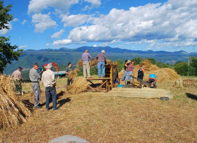 Antichi mestieri in Garfagnana del mondo rurale dei nostri alpigiani,