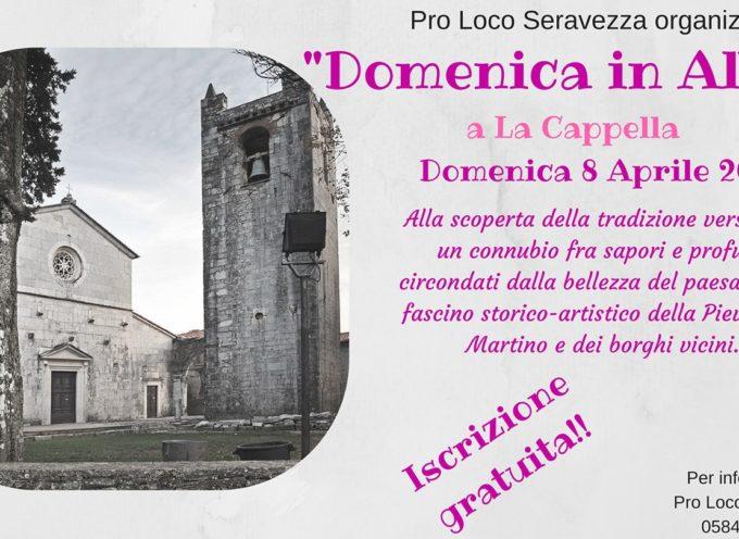 """La Pro Loco Seravezza ha il piacere di presentare l'evento della """"Domenica in Albis"""", che si svolgerà Domenica 8 Aprile presso La Cappella."""