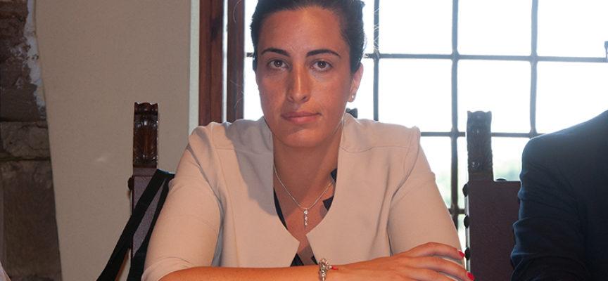 Nuovo look cittadino e palazzetto: sindaco D'Ambrosio investe 8 milioni
