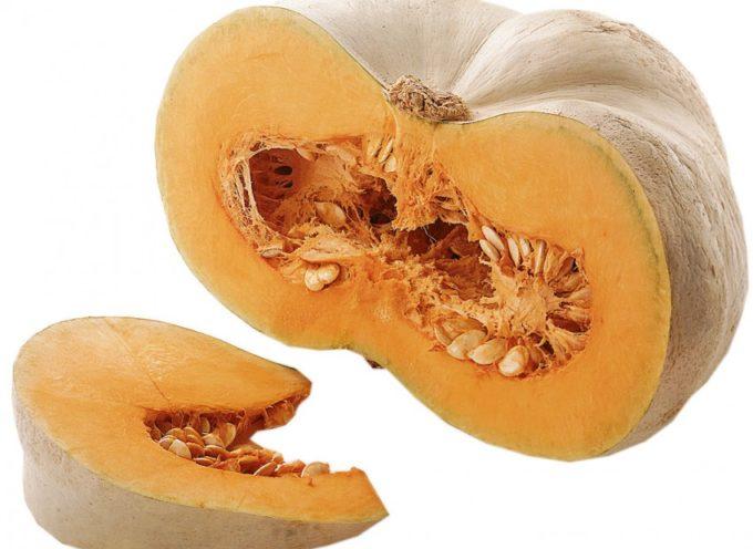 La zucca: istruzioni e consigli di coltivazione