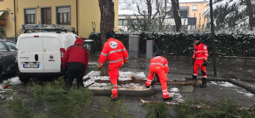 Encomio del sindaco Fornaciari alla Croce Verde di Porcari