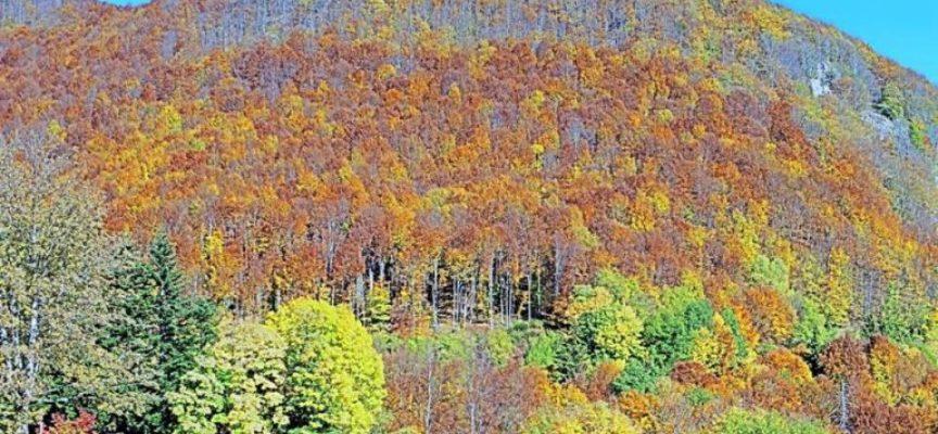 Previsioni Meteo per la Valle del Serchio, aggiornamento 18 marzo