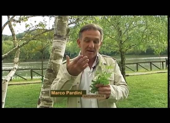 I colori del serchio Le betulle e rifugio alpi apuane con Marco Pardini