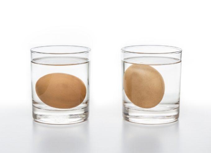 Come si fa a capire se le uova sono ancora fresche?