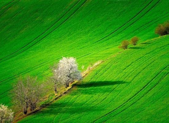 """"""" La terra non ha tetto """", dicono i contadini."""