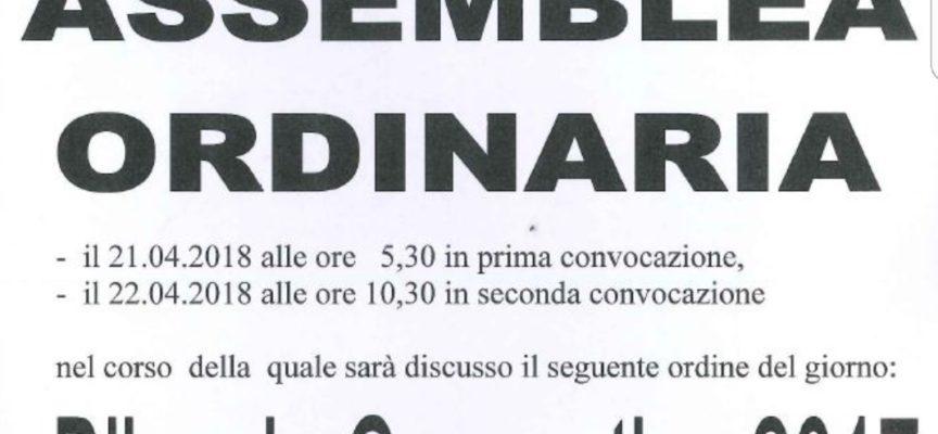 Croce Verde P.A. di Lucca, convocata l'assemblea ordinaria dei soci per il bilancio consultivo 2017