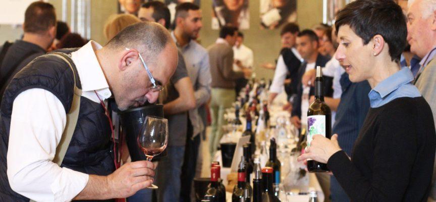Ritorna Anteprima Vini della Costa Toscana, il 5 e 6 maggio al Real Collegio a lucca