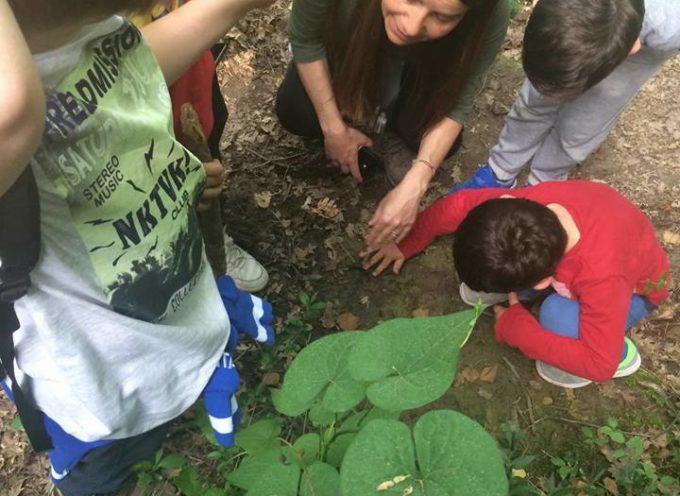 """Con """"Eco-guide escursioni naturalistiche"""" che ha come missione il condurre alla scoperta dei tesori,"""