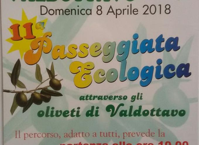 11ª Passeggiata Ecologica a  Valdottavo, Borgo a Mozzano domenica 8 aprile