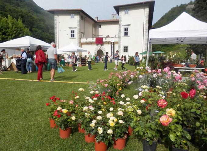 Giardino Fiorito: nel fine settimana torna a Palazzo Mediceo la popolare rassegna di fiori e piante