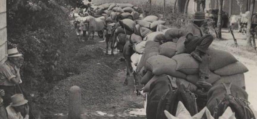 """le carovane di grano attraversavano i paesi per andare a trasformarsi in farina….era """"l'oro bianco""""…"""
