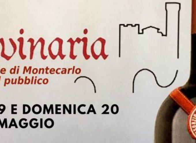 """Fattorie aperte e degustazioni vini DOC con servizio continuativo navetta """"Wine Bus"""". A Montecarlo"""