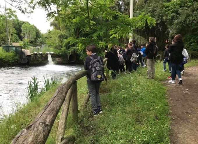 con i ragazzi della 1a e della 1c di Montignoso siamo nel Parco della Versiliana