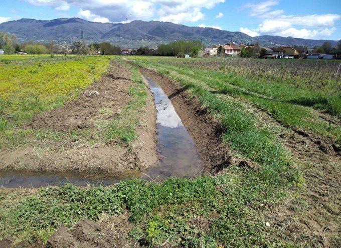 Zona nord del Capannorese, scavato quasi un chilometro della canaletta Palamide