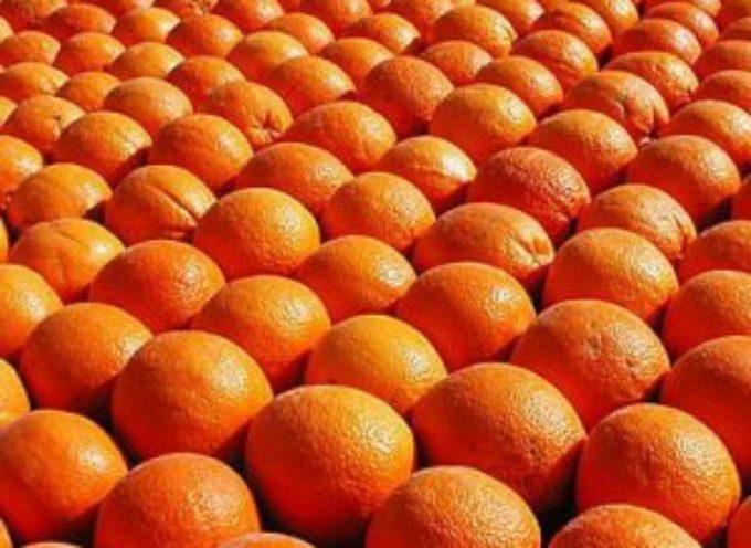 Consumi. Più succo nelle aranciate, dal 12 al 20 per cento