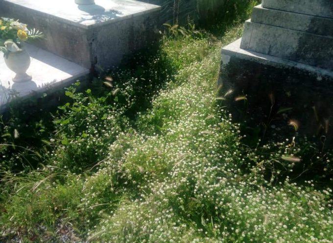 FdI Capannori su cimiteri