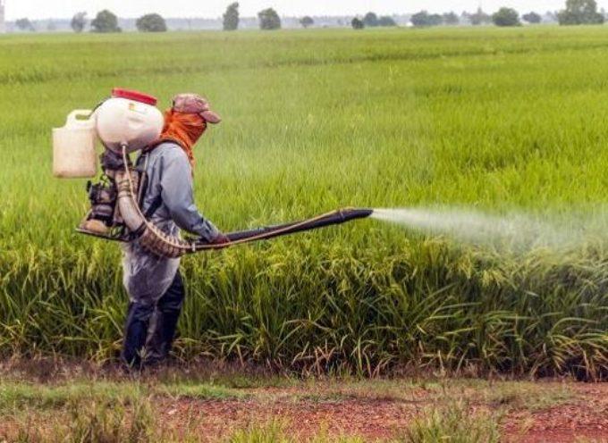 Record negativo per il quantitativo di pesticidi nelle acque