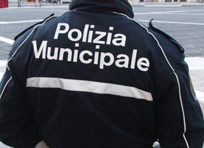 LUCCA – Si potenziano le attività di controllo della Polizia municipale in orario notturno