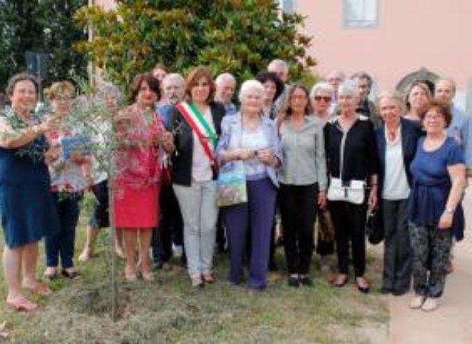 """Inaugurata al museo Athena la mostra """"Via Francigena lungo il cammino"""""""