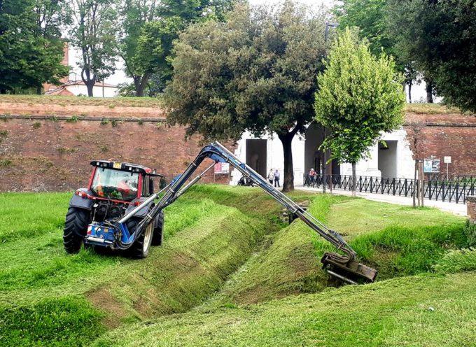 Continuano i Lavori di sfalcio sugli spalti e nei fossati  di Porta Elisa