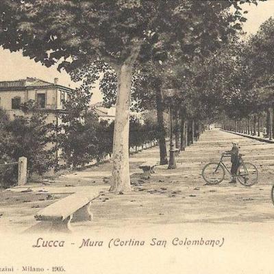 UNA FOTO DEL 1905 DI LUCCA