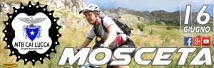 Mosceta