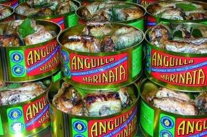 anguilla Comacchio