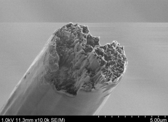 Dalla Svezia, un materiale super-resistente che è anche biodegradabile